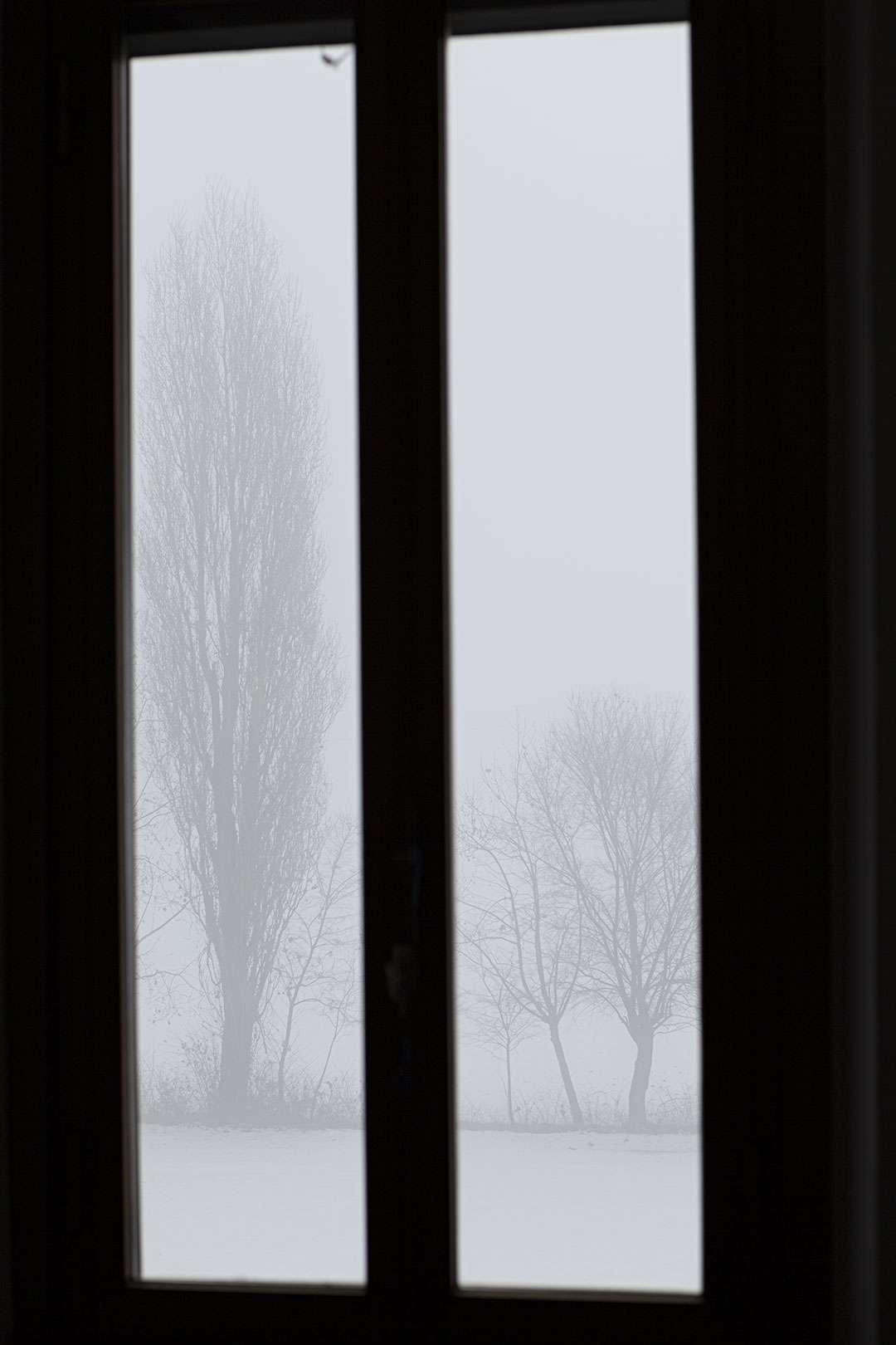 la finestra di sarah 16 dicembre 2012