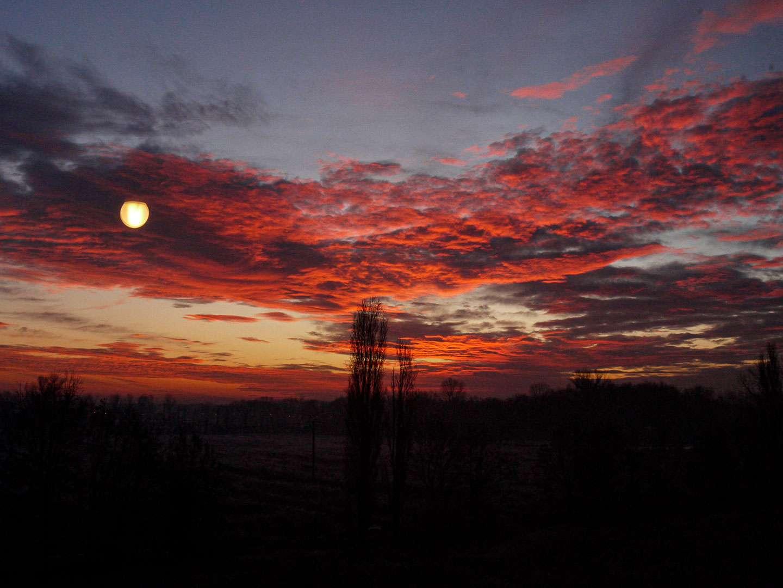 la finestra di sarah 28 dicembre 2009