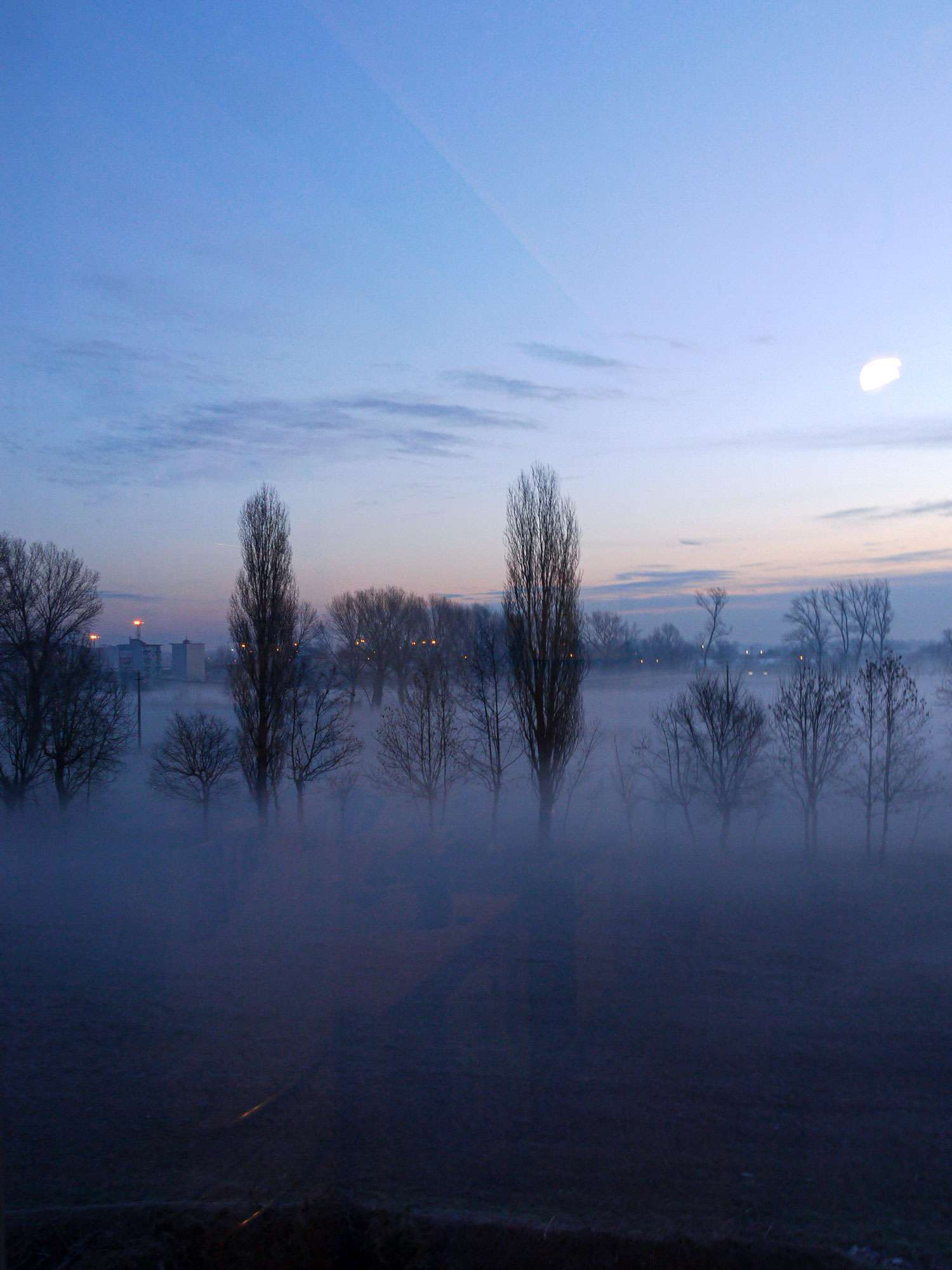 la finestra di sarah 21 gennaio 2011